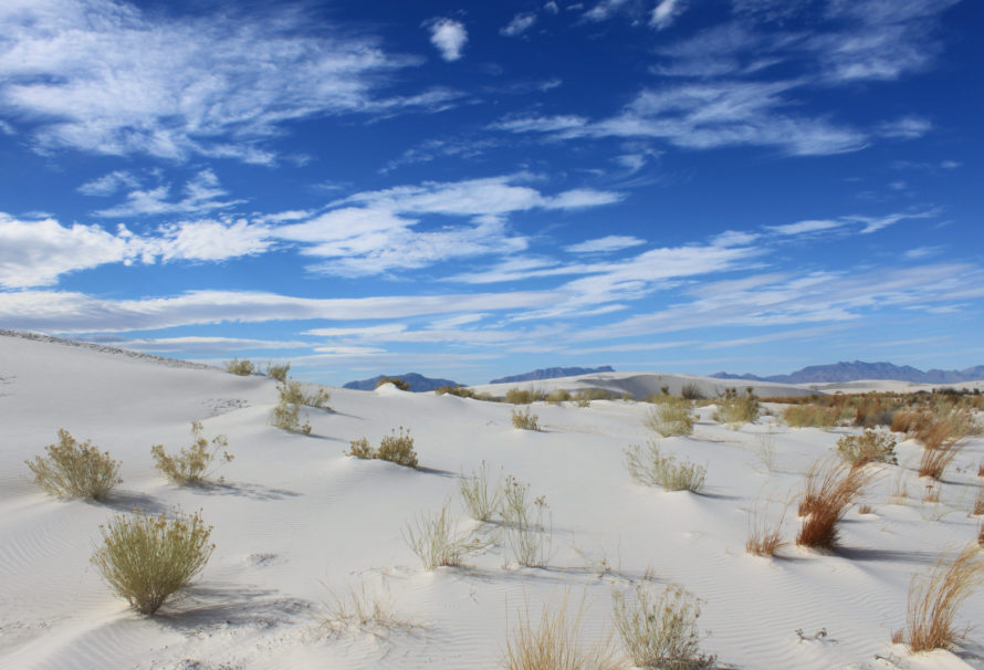 Breaking Bad & Co – 3 Ways to Get Your Film Fan Fix in New Mexico, USA