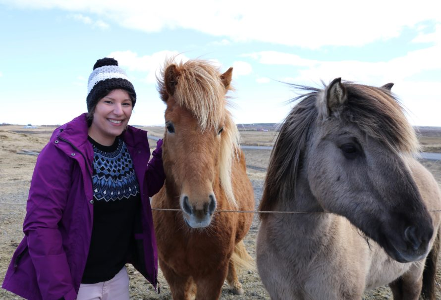Exploring Iceland on Horseback: My Lava Tour with  Íshestar Horse Riding